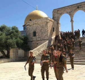 460_0___10000000_0_0_0_0_0_soldiers_aqsa