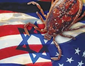 4_Israeli_Parasite-300x231